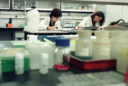 Women at a pharmaceutical laboratory