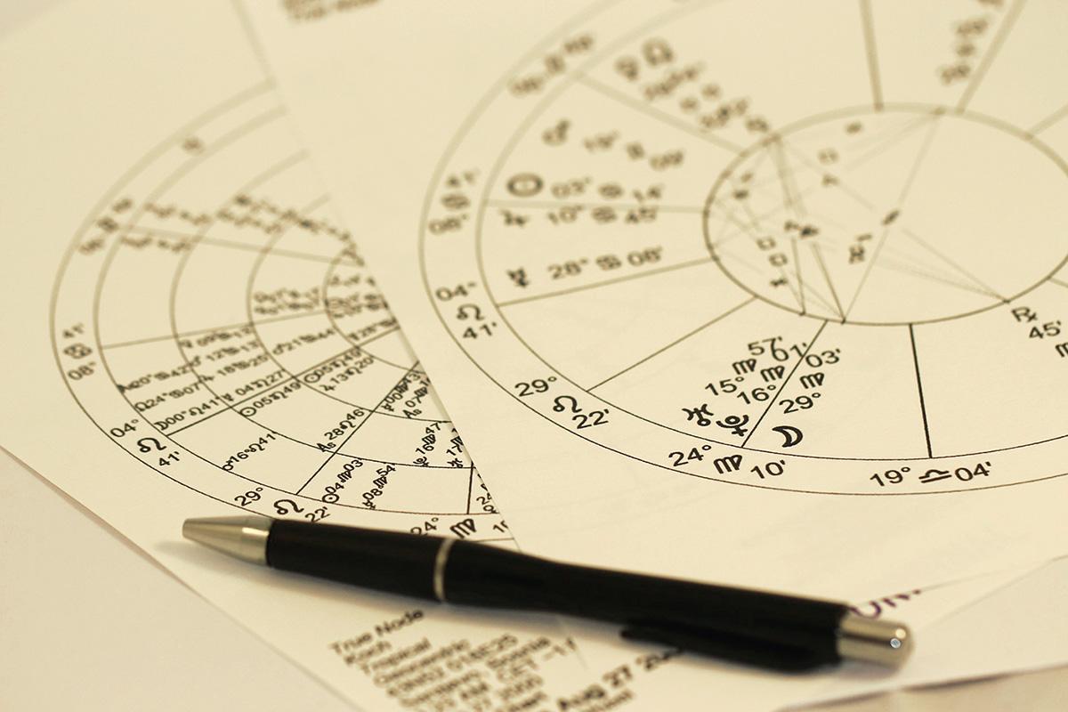 From creationism to economics