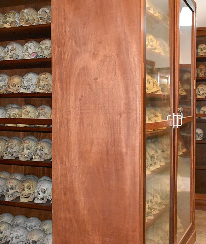 Osteological collections