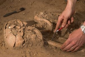 dna human remains