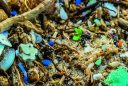 microplastics article